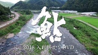 鮎 2018 入れ掛かりDVD