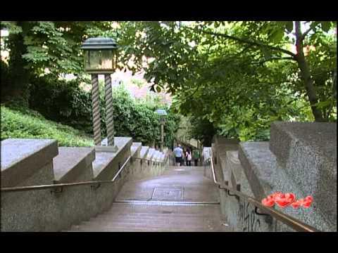 The American International School Zagreb
