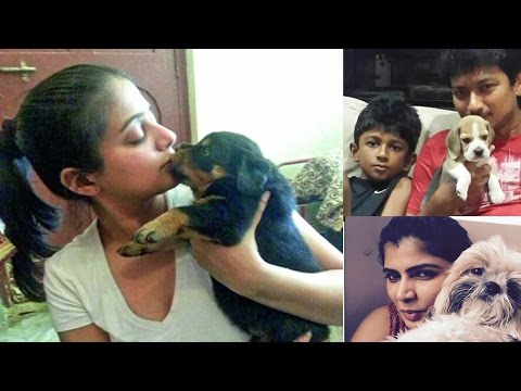 What pets do celebrities have |  Indian Actors and Actress who love pets | Dog, Cat, Horse