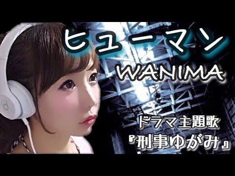 ヒューマン/WANIMA『刑事ゆがみ』ドラマ主題歌-cover【フル歌詞付き】