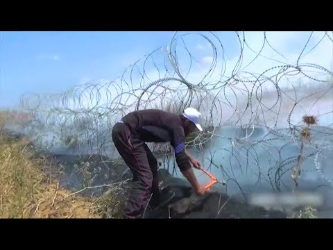 "Norman Finkelstein: Palestinians Have the Right to Break Free of the ""Unlivable"" Cage That Is Gaza"