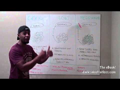 Leptin: Fat Loss for Smart People!