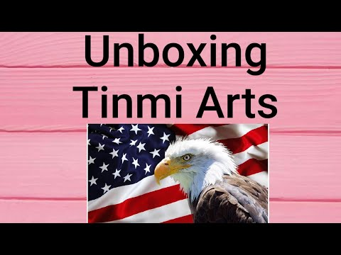 Unboxing Tinmi Arts-American Flag & Eagle