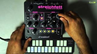 Using Waldorf Streichfett for making House Music Chords and Stabs