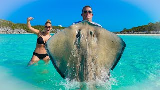 MASSIVE STINGRAY!!! {Catch Clean Cook} Authentic Philippine Recipe