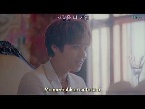 [INDO SUB/HAN] 박지훈(PARK JIHOON) - L.O.V.E MV