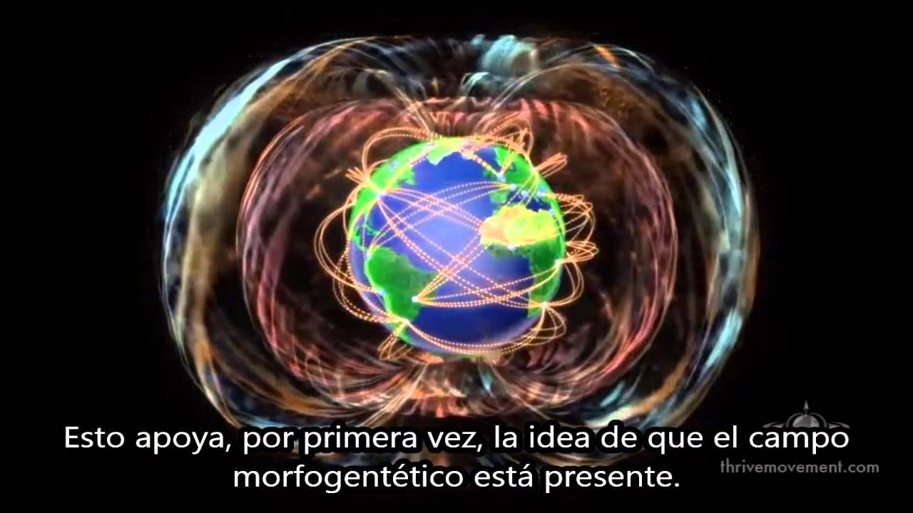 BIO THINKING: Nassim Haramein - Cómo tus pensamientos crean la realidad (subtitulado)