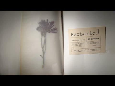 Herbario#1
