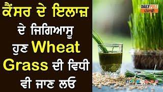 ਕੈਂਸਰ ਦੇ ਇਲਾਜ਼ ਦੇ ਜਿਗਿਆਸੂ ਹੁਣ Wheat Grass ਦੀ ਵਿਧੀ ਵੀ ਜਾਣ ਲਓ | Daily Post Punjabi