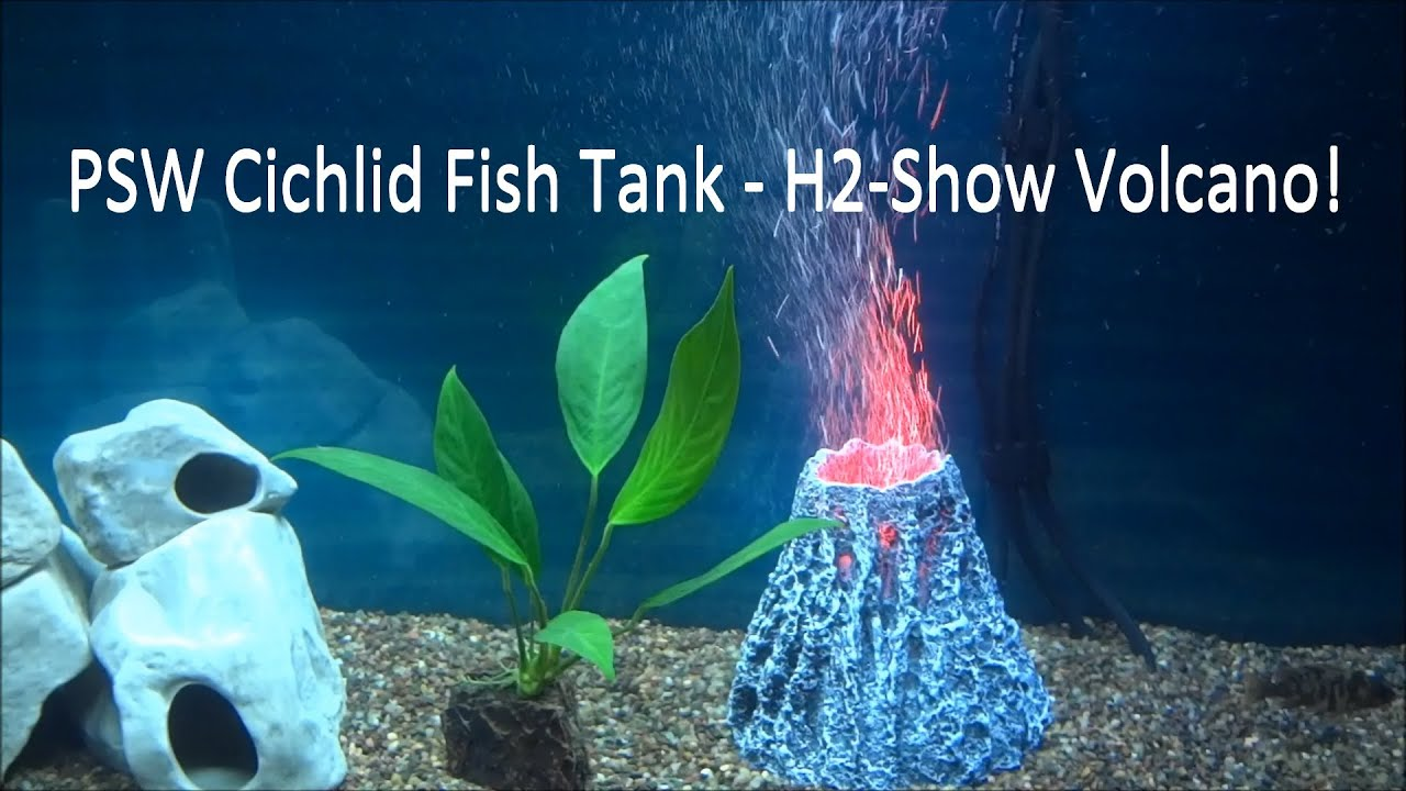Psw cichlid fish tank update ep 2 h2 show volcano hd for Fish tank volcano