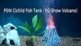 Psw Cichlid Fish Tank Update Ep #2 - H2 Show Volcano! (hd)
