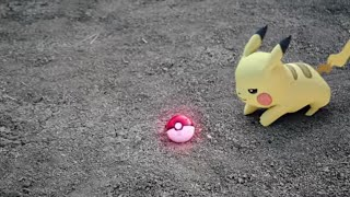 Pokémon: Let's Go, Pikachu! In Real Life
