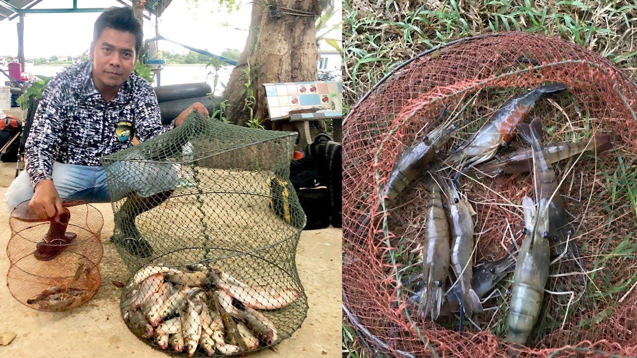 ตกปลาแม่น้ำเจ้าพระยากระชังแทบแตก ที่แพเกาะใหญ่ (แพพี่ดำ) ปทุมธานี ตกปลา กับ Animal Presents