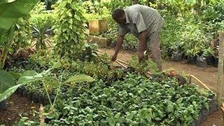Environnement : Lancement d'un concours national des villes et villages verts et fleuris