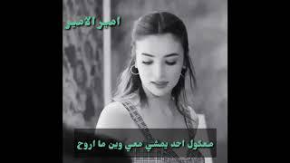 فارس مهدي /اندماج ألارواح- حالات واتس اب حب -وشلون مدري روحين في روح
