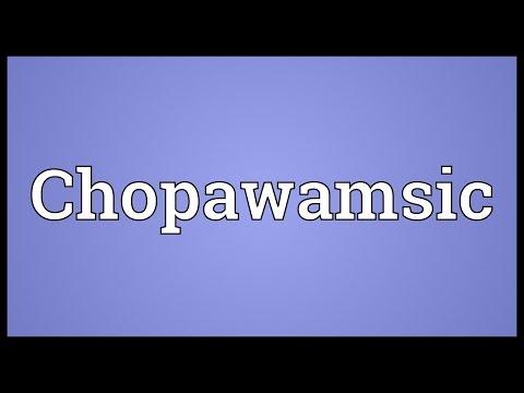 Chopawamsic Meaning