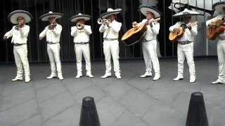 MARIACHIS MI MEXICO thumbnail