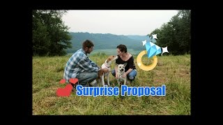 Who does your dog love more? -Surprise proposal
