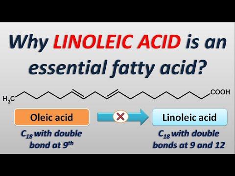 Why LInoleic Acid Is An Essential Fatty Acid?