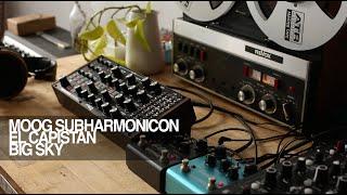 Moog Subharmonicon with Strymon El Capistan and Blue sky