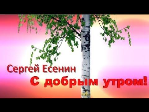 С Есенин С добрым утром