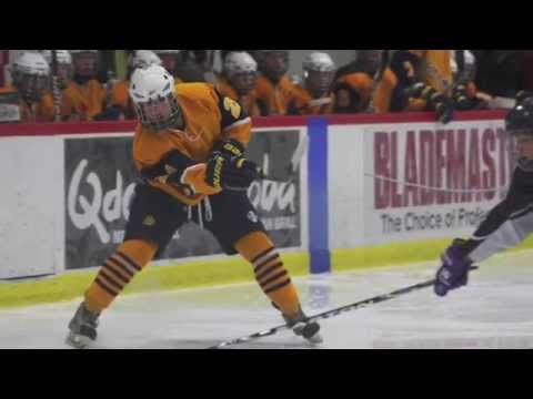 Saline Hockey 2012