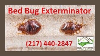 Bed Bug Exterminator Palmyra Missouri