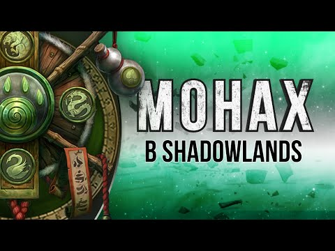 Монах в Shadowlands. Изменения в отрицательной динамике.