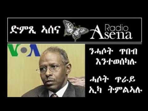 Assenna: Yemane Monkey's Art of Deceit