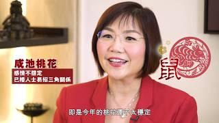 【豬、鼠、牛、虎】麥玲玲2019豬年運程 X 新年開運髮!