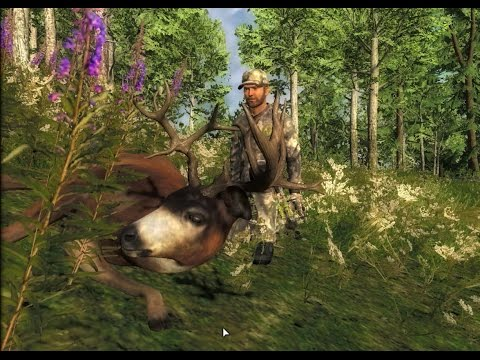 TheHunter: Non-typical Blacktail Buck Harvested On Whitehart Island