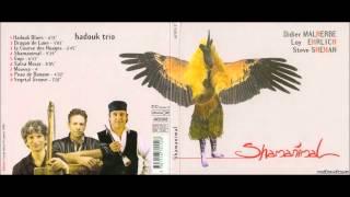 Hadouk trio – Moussa