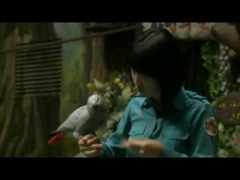 This Parrot Is No Bird Brain    Chicagotribune Com