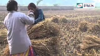 No Ownership of Farm Land in Chhichhor, Uttar Pradesh - Video Volunteer Satendra Kumar Reports