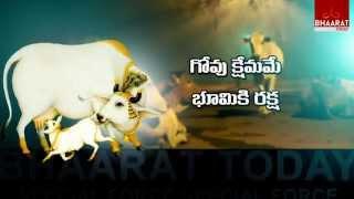 Focus- Goseva Part -3 I Bhaarat Today