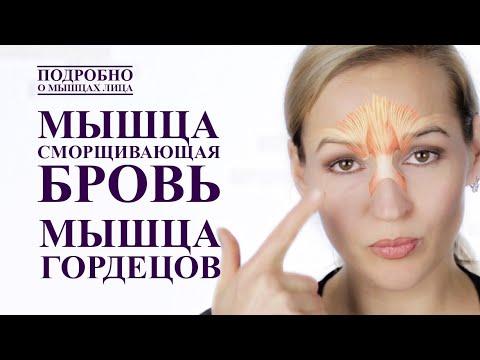 Гимнастика от морщин на лице в домашних условиях