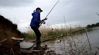 Клевая рыбалка 2018. Прострелило
