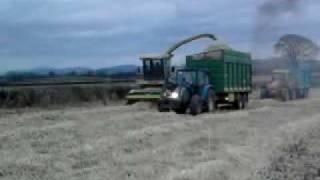 Miscanthus Harvest 2010 Kilkenny Ireland