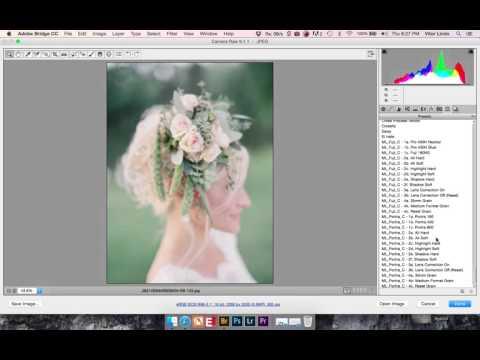 Mastin Labs Preset Tutorial for Canon