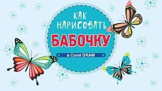 Как нарисовать бабочку. Как нарисовать бабочку в программе Corel DRAW.(Как нарисовать бабочку. Как нарисовать бабочку в программе Corel DRAW. Урок «Как нарисовать бабочку» позволит..., 2016-09-14T13:40:51.000Z)
