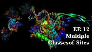 12. Multiple Classes of Sites  Molecular Pharmacology