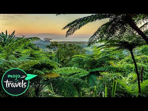 Top 10 Beautiful Rainforests