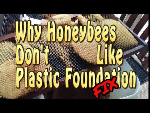Beekeeping / Why Aren