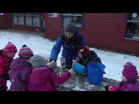 Barnehage i Norge - Norsk