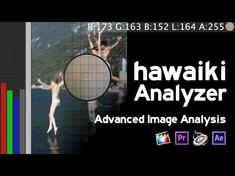 Analyzer for Final Cut Pro, Premiere Pro, After Effects and Motion Tutorial