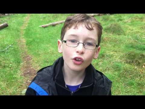 Cairngorms Nature Young Ambassador -  Ant man and Slugs
