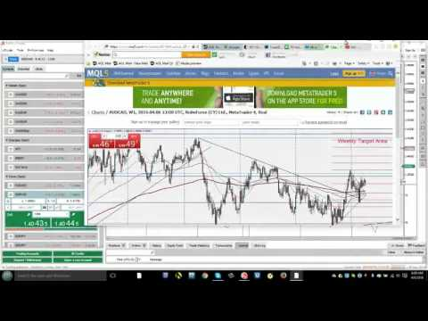 Forex Live Analysis Room show 650th