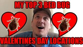Bed Bugs on Valentines Day - Top THREE Places People NEVER think of for BEDBUGS on Valentines Day!