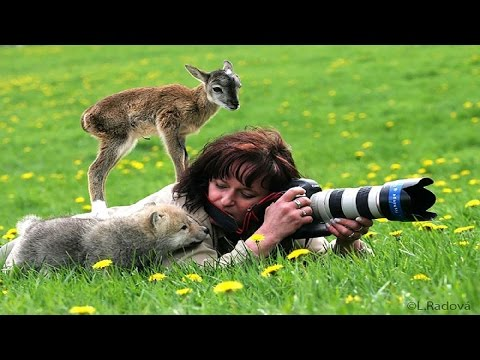 20+-reasons-why-being-a-nature-photographer-is-the-best-job-in-the-world