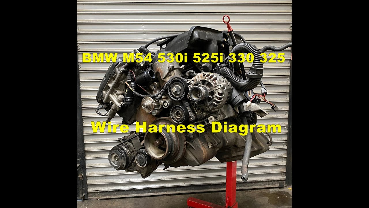 maxresdefault bmw m54 engine wire harness diagram 525i 325 x5 part 2 youtube BMW R80 Wiring Harness at virtualis.co